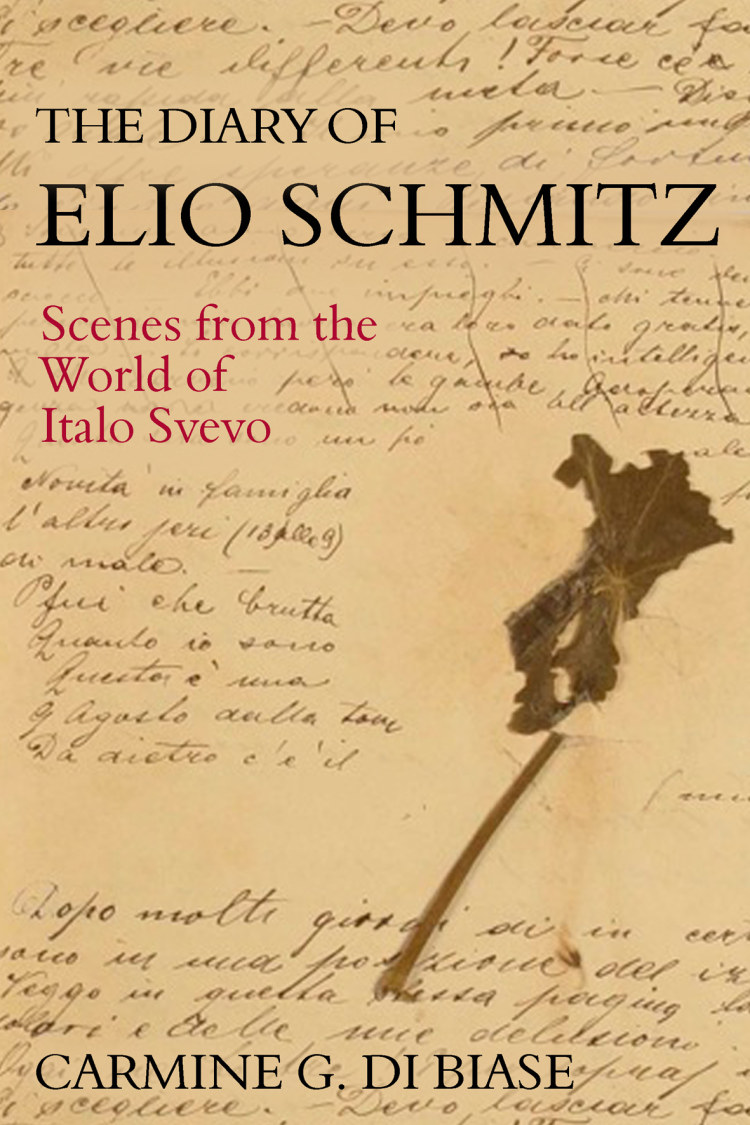 Troubador The Diary of Elio Schmitz