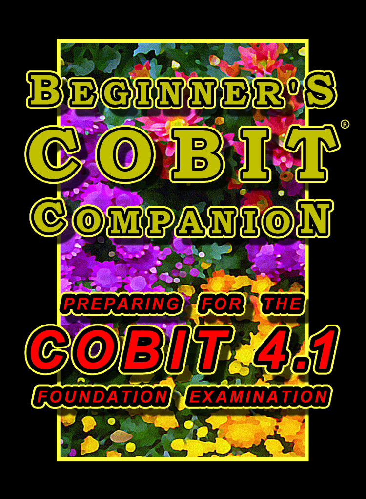 Troubador Beginner's COBIT Companion: Preparing for the COBIT 4.1 Foundation Examination