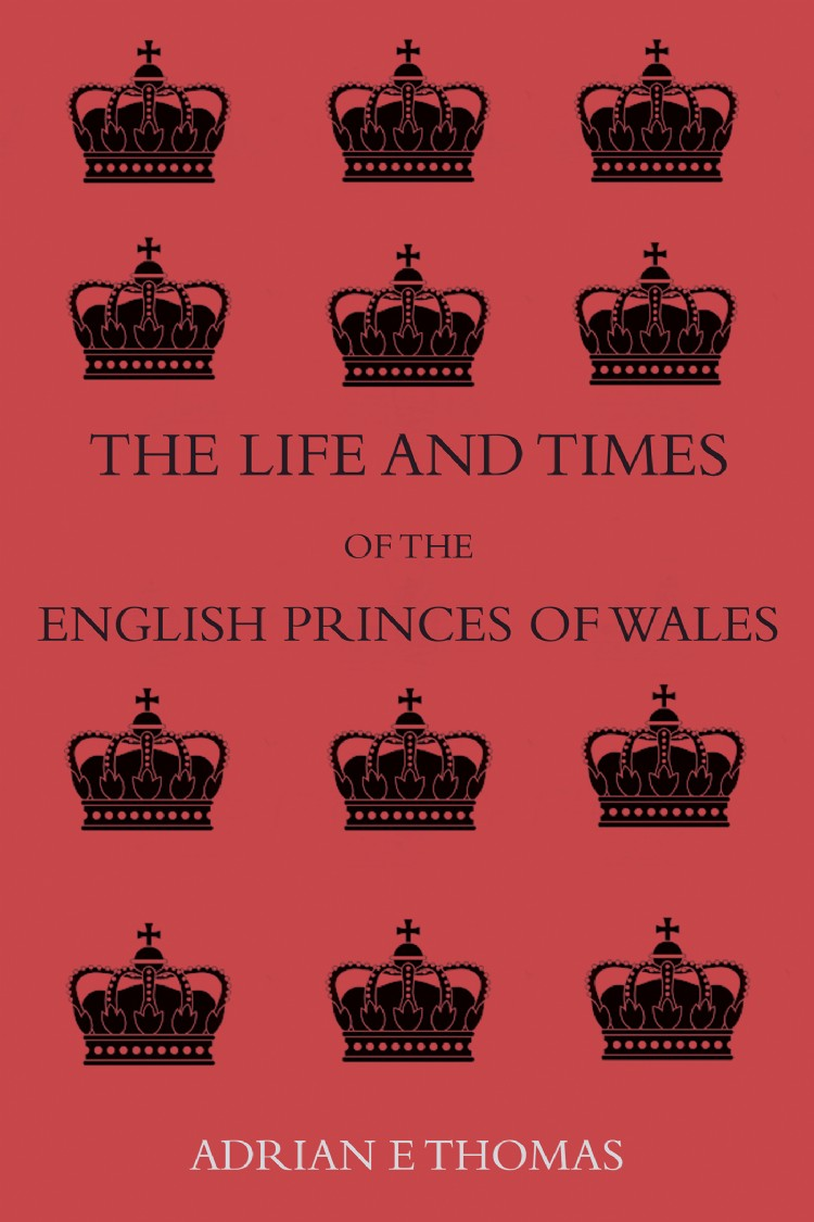 Troubador The Life and Times of the English Princes of Wales