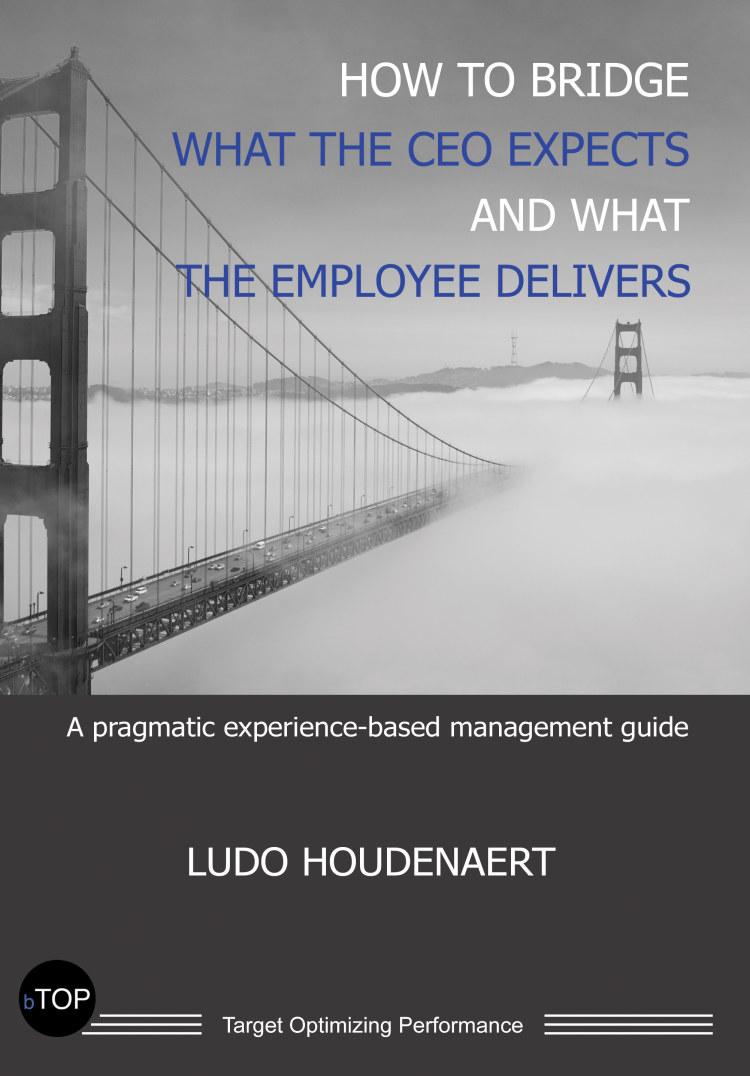 Troubador How to Bridge what the CEO expects and what the Employee delivers