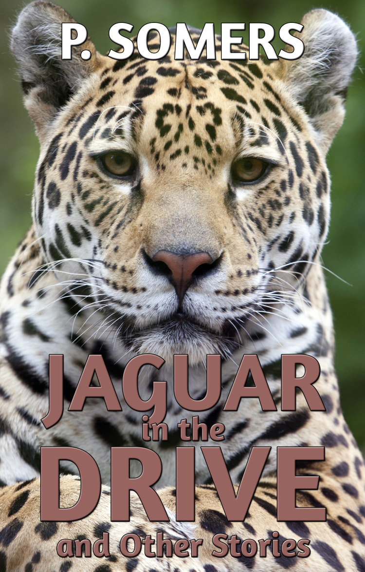 Troubador Jaguar in the Drive and Other Stories