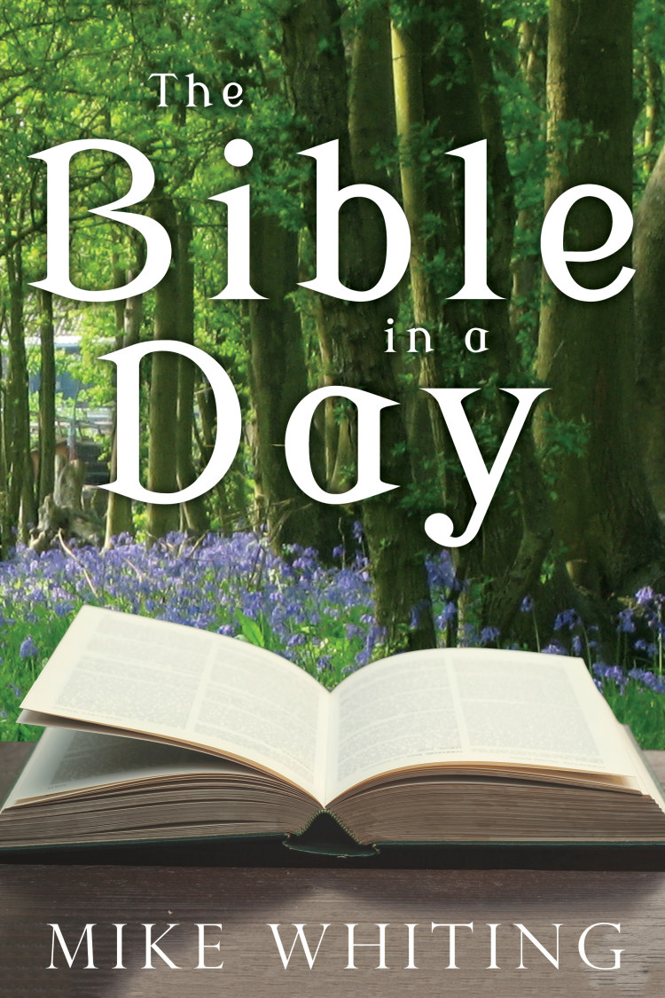 Troubador The Bible in a Day