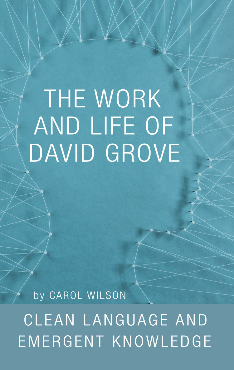 Troubador The Work and Life of David Grove