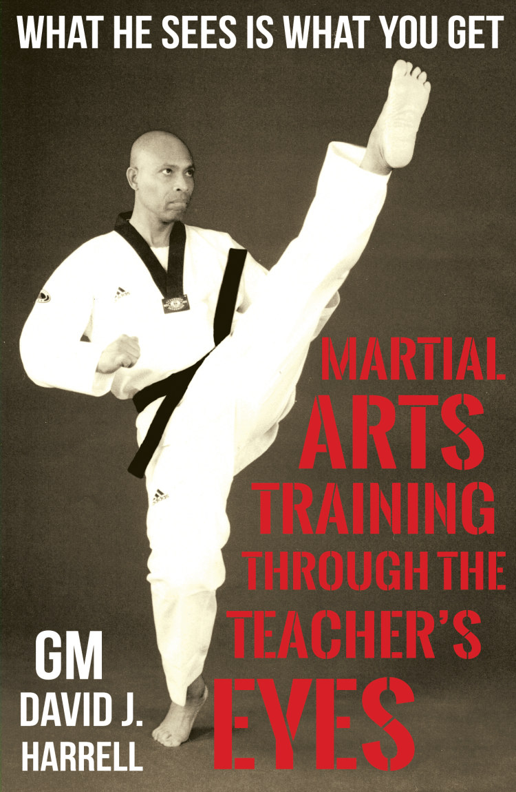 Troubador Martial Arts Training Through The Teacher's Eyes