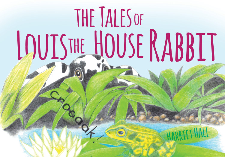 Troubador The Tales of Louis the House Rabbit