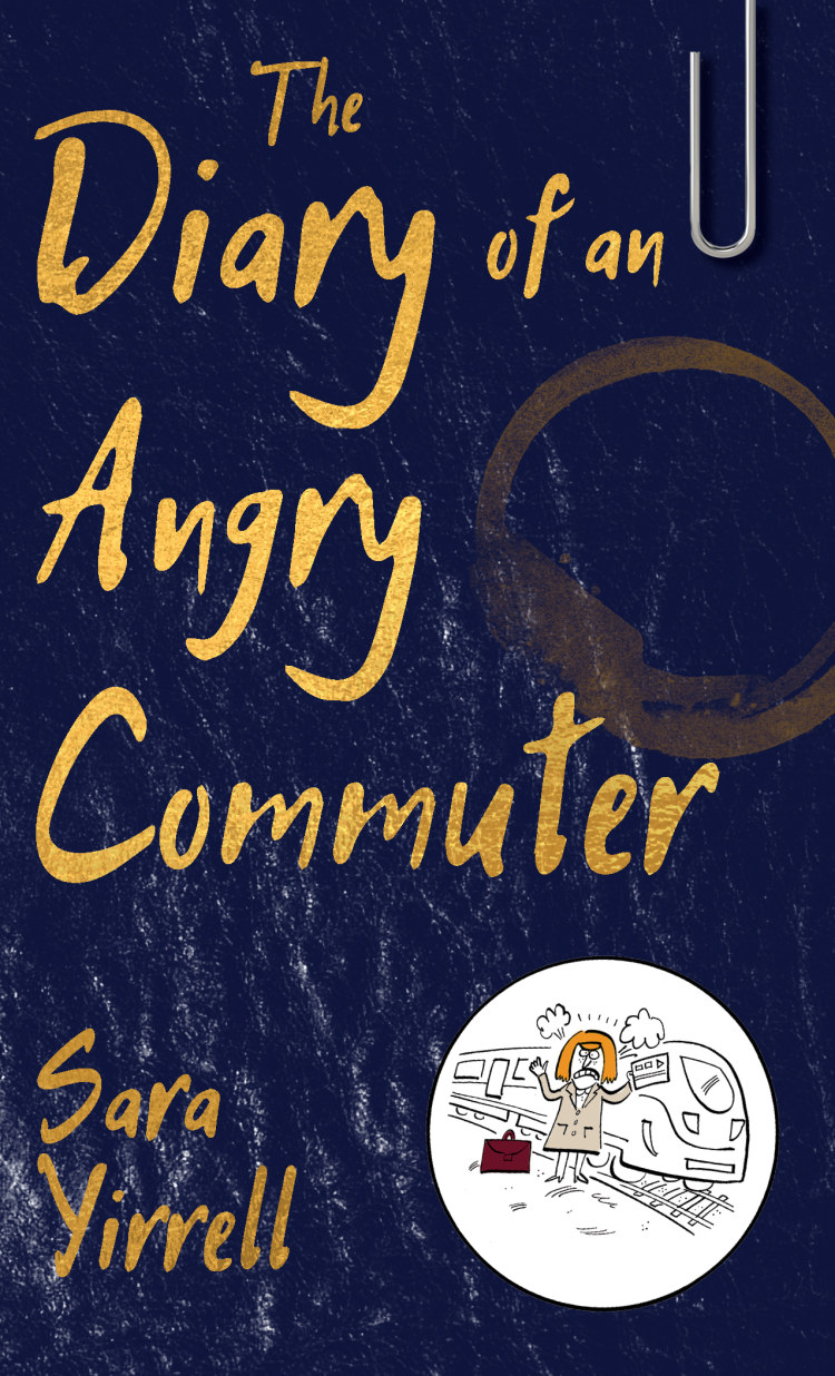 Troubador The Diary of An Angry Commuter