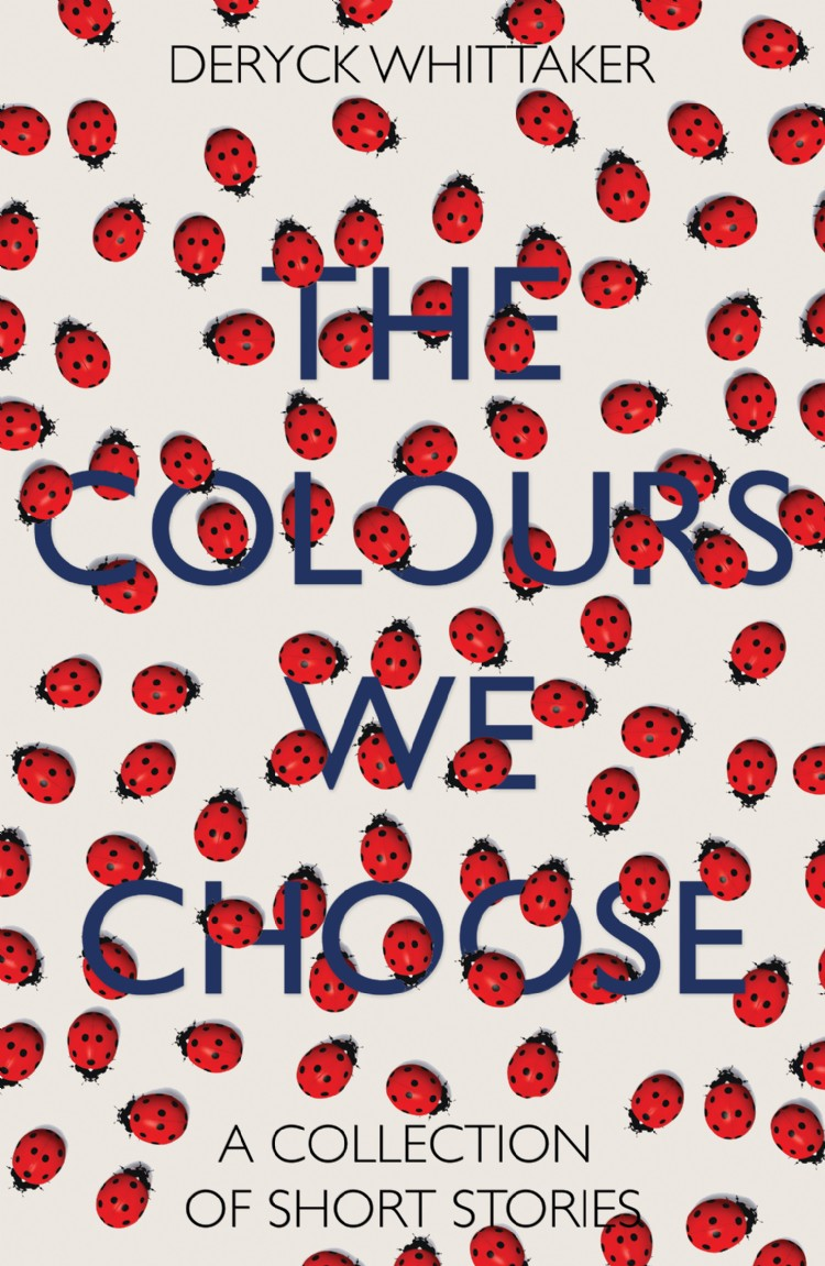 Troubador The Colours We Choose
