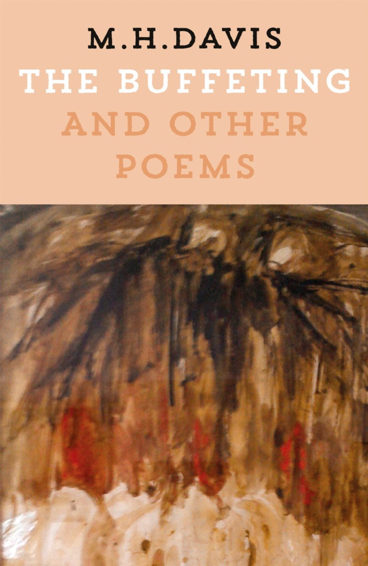 Troubador The Buffeting and Other Poems