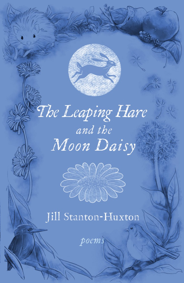 Troubador The Leaping Hare and the Moon Daisy