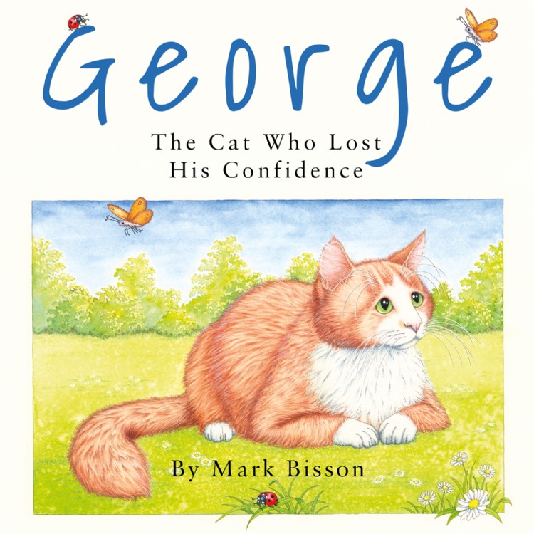 Troubador George: The Cat Who Lost His Confidence