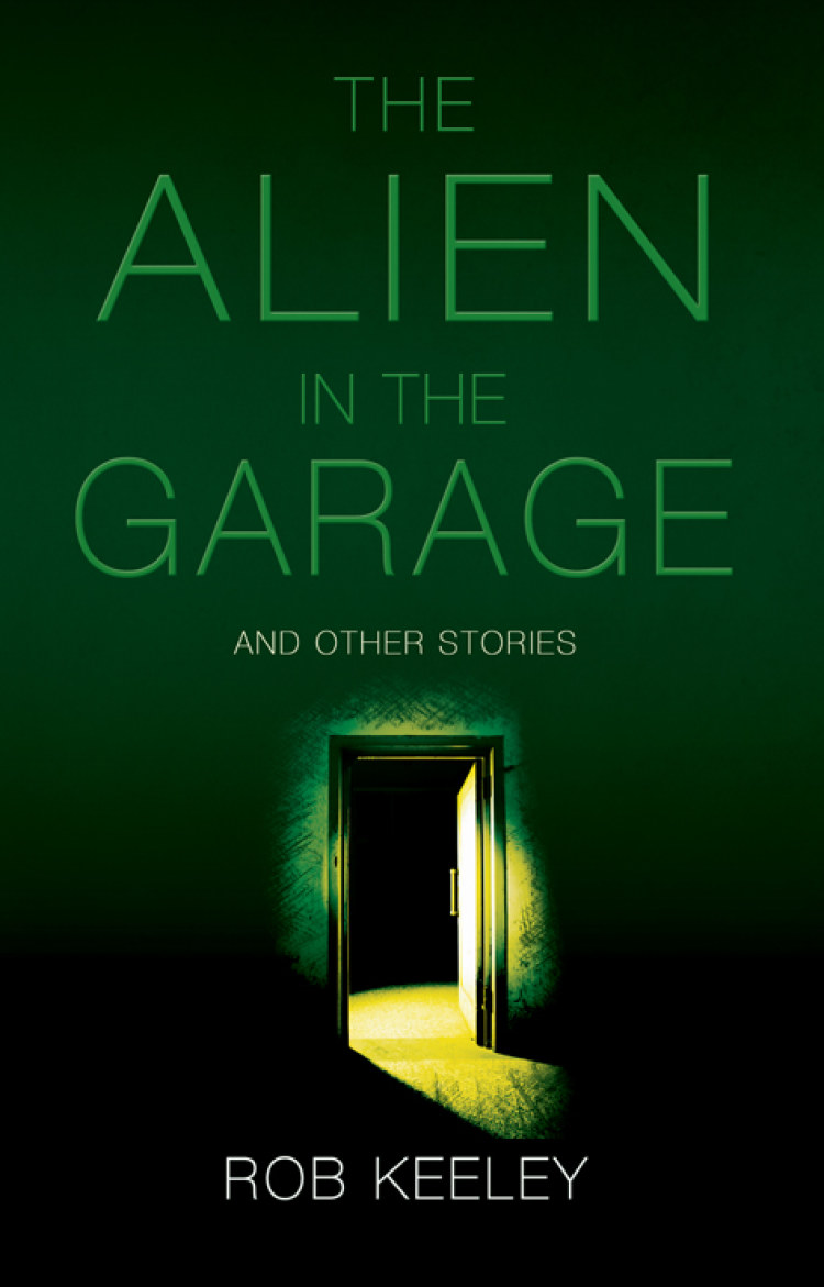Troubador The Alien in the Garage and Other Stories