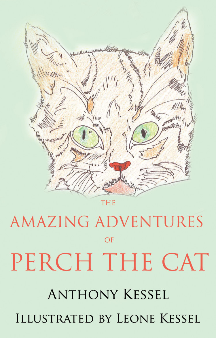 Troubador The Amazing Adventures of Perch the Cat