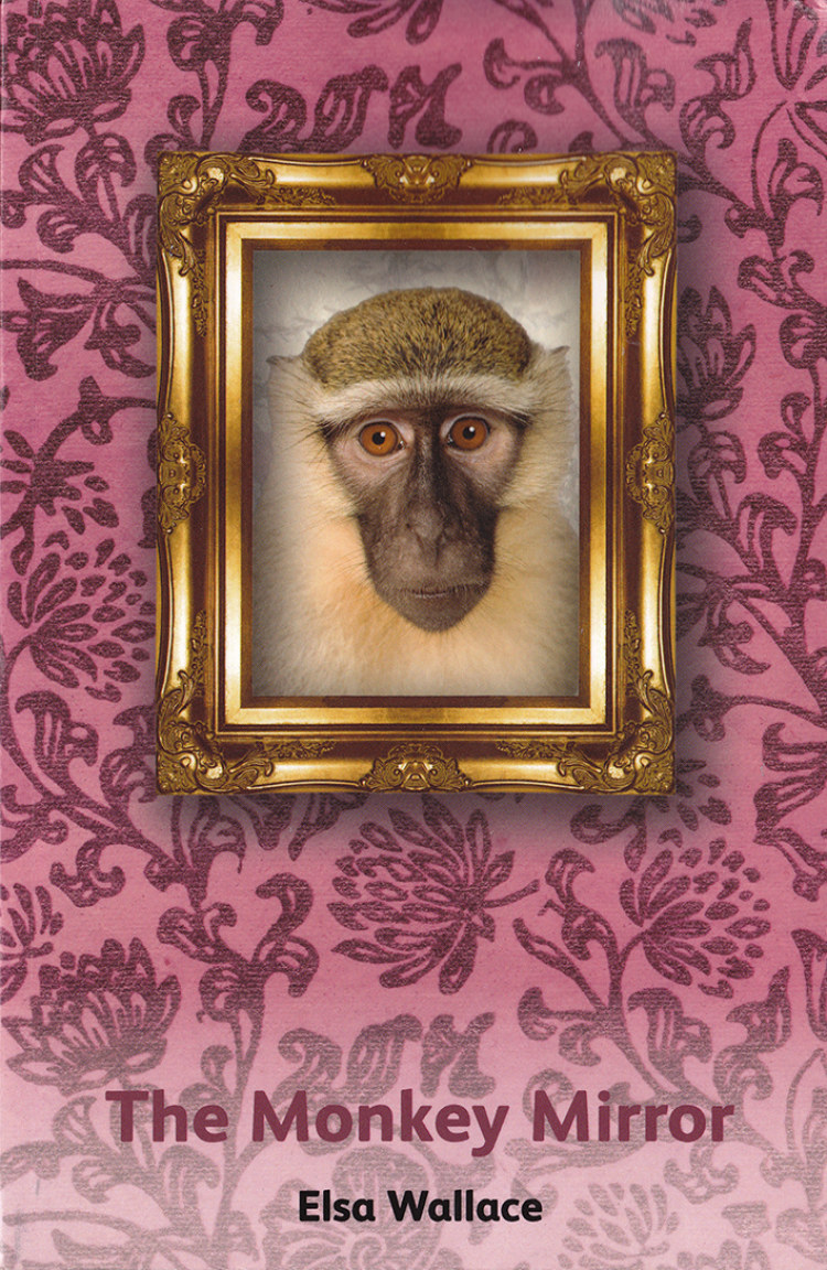 Troubador The Monkey Mirror