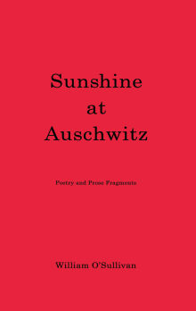 Picture of Sunshine at Auschwitz