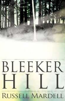 Picture of Bleeker Hill