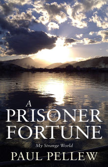Picture of A Prisoner of Fortune
