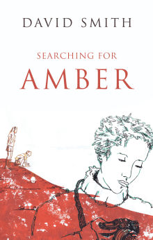 Picture of Searching For Amber