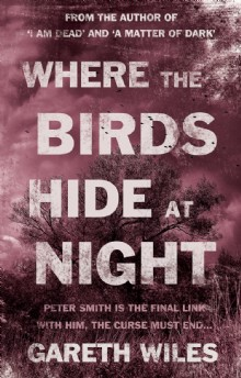 Picture of Where The Birds Hide At Night