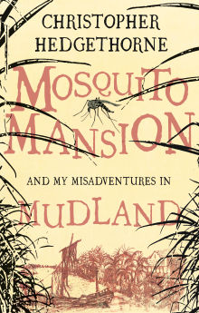 Picture of Mosquito Mansion and my Misadventures in Mudland