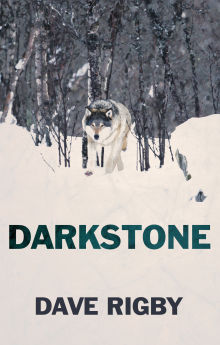 Picture of Darkstone