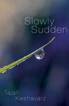 Picture of Slowly Sudden