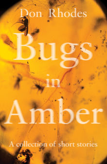Picture of Bugs in Amber