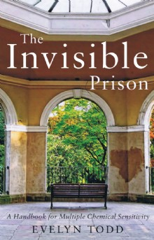 Picture of The Invisible Prison