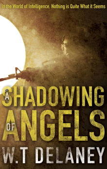 Picture of A Shadowing of Angels
