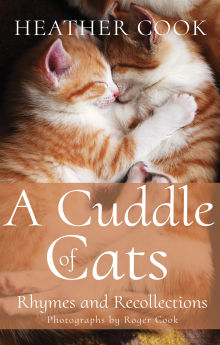 Picture of A Cuddle of Cats