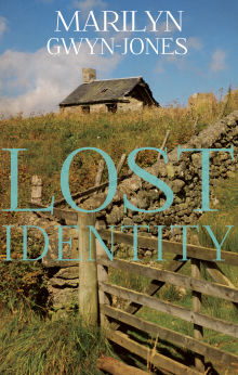 Picture of Lost Identity