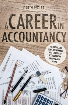 Picture of A Career in Accountancy