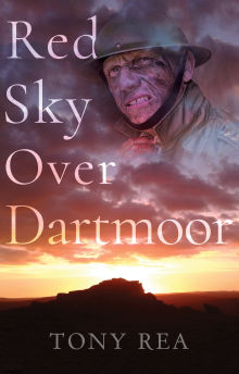 Picture of Red Sky Over Dartmoor