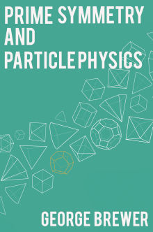 Picture of Prime Symmetry and Particle Physics