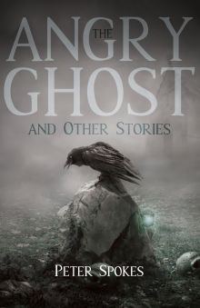 Picture of The Angry Ghost and Other Stories
