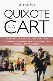 Picture of Quixote in a Cart