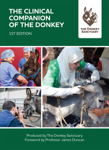 Picture of The Clinical Companion of the Donkey