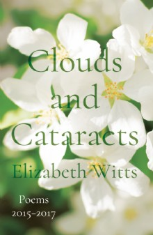 Picture of Clouds and Cataracts
