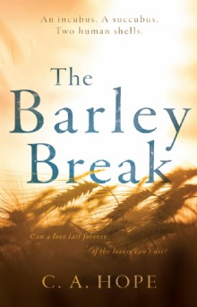 Picture of The Barley Break