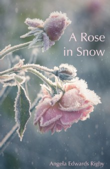 Picture of A Rose in Snow