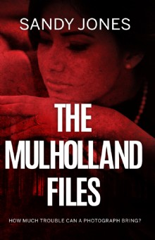 Picture of The Mulholland Files