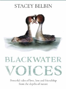 Picture of Blackwater Voices