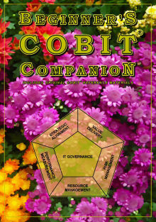 Picture of Beginner's COBIT Companion