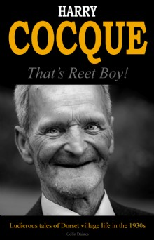 Picture of Harry Cocque