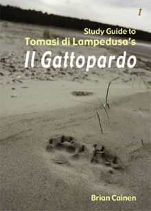 Picture of Study Guide to Tomasi Di Lampedusa's